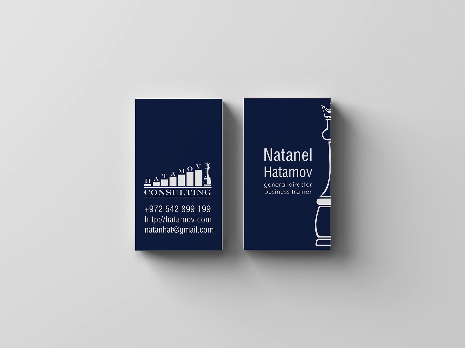 Логотип и фирменный стиль Hatamov Consalting 8